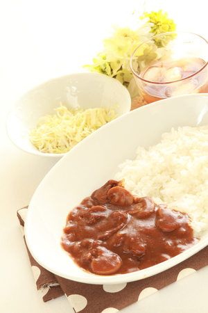 beef stew: Japanese food, beef stew with rice Stock Photo