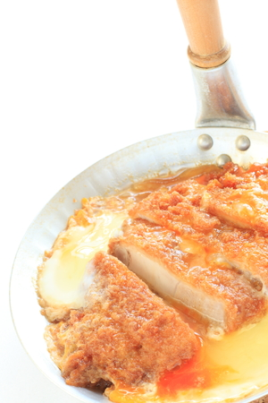 japanese cooking: Japanese cooking, Tonkatsu and egg