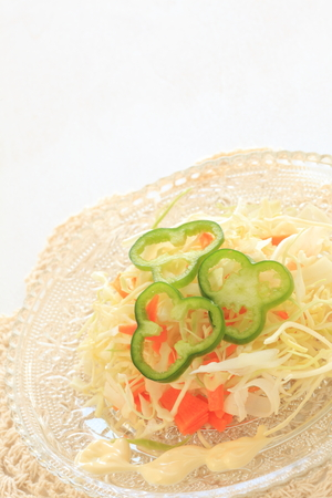 english food: English food,  Coleslaw Cabbage salad with green pepper Stock Photo