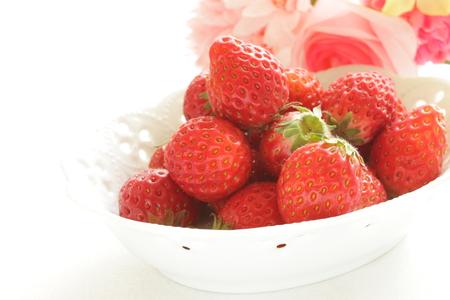freshness: frescura fresa de Jap�n