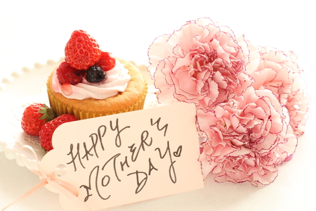 mothers day: Mothers day card and carnation Stock Photo
