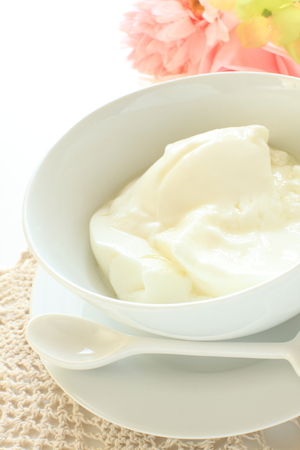 yogurt natural: yogur natural con la flor en el fondo
