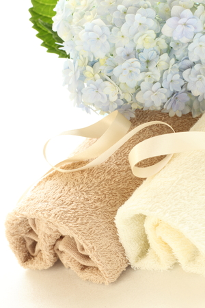 home keeping: Hydrangea and towel