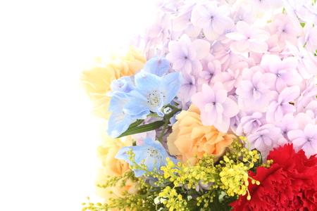 early summer: early summer flower hydrangea bouquet