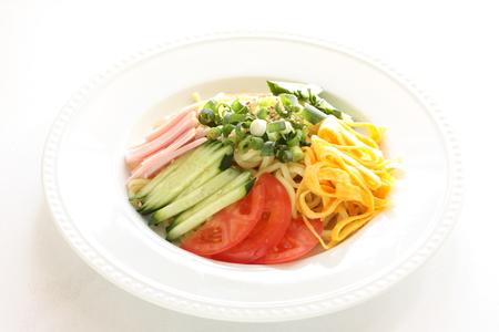 日本の夏の料理、HiyshiChuka 冷麺 写真素材