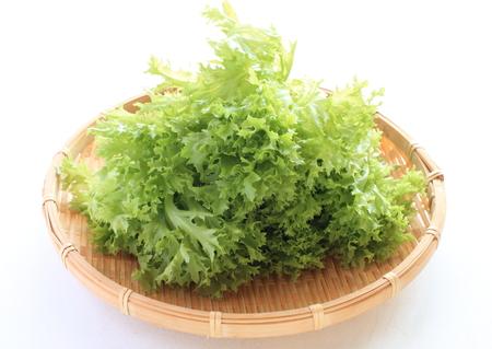 frescura: frescura lechuga de japonés
