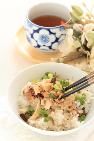 green onion: Pacific saury and green onion on rice