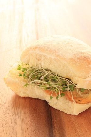 broccoli sprout sandwich Stock Photo