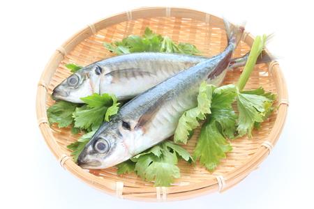 ingredient: Japanese food ingredient, aji Stock Photo