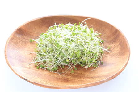 freshness broccoli sprout