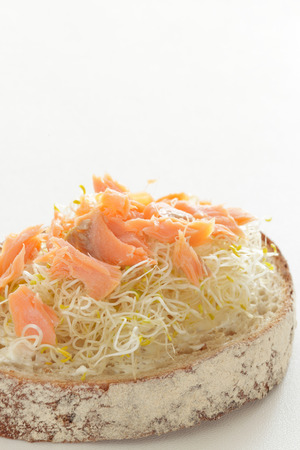 sake: sprout and grilled salmon open sandwich Foto de archivo