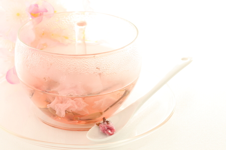 Japanische Kirschblüte Sakura Tee Standard-Bild - 80477114