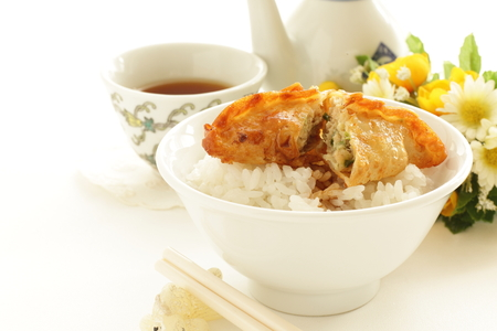 deep fried gyoza for asian food image Stock Photo