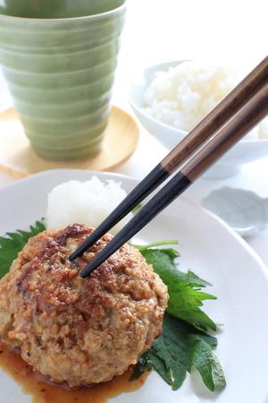 Japanese Hamburger and radish sauce Reklamní fotografie