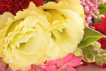 close up of yellow flower bouquet Stock Photo - 96151064