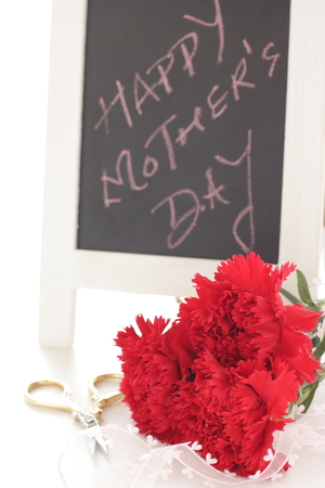 Carnation bouquet and gift for mothers day image 写真素材