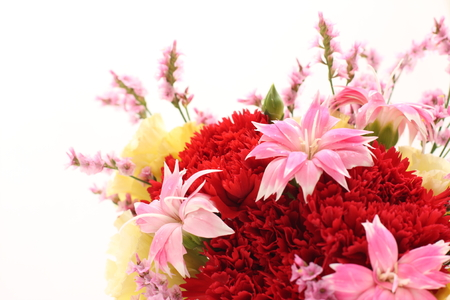 Dianthus and carnation flower bouque for Mothers day image background
