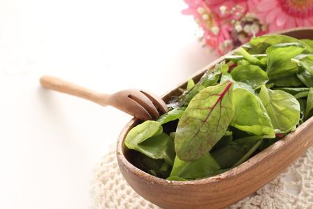 Freshness baby leaf vegetable on wooden salad bowl