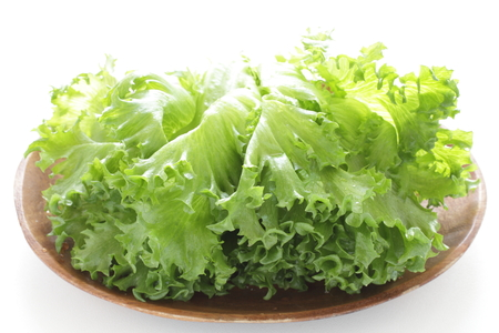 Freshness lettuce on white background Stock Photo