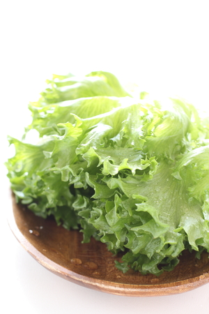 Freshness lettuce for healthy food ingredient image Stock Photo