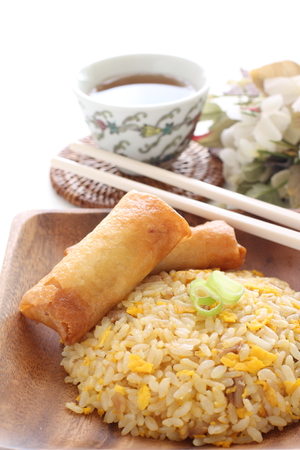 Homemade spring roll and fried rice Stock Photo - 119721552