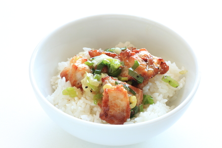 Chinese scallion and chicken on rice