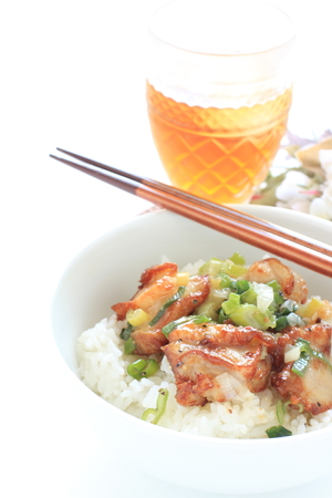 Chinese scallion and chicken on rice  with tea Stock Photo