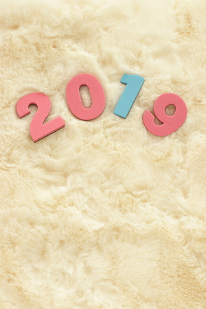 Number 2019 on flak fur for new year background