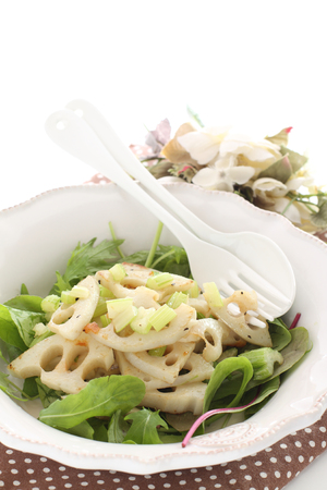 Boiled lotus roots and baby leaf salad Stock Photo