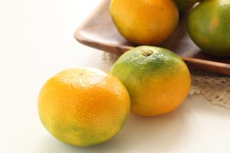 Japanese Mikan Orange for autumn fruit image Banco de Imagens