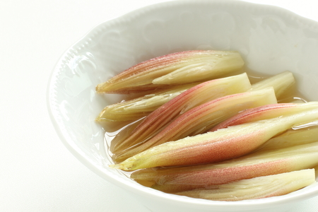 Pickled Japanese Myoga ginger 版權商用圖片