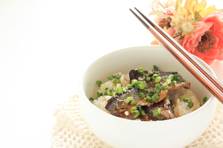 Japanese canned food, simmered Pacific Saury on rice