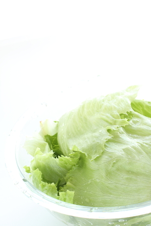 Freshness lettuce in bowl for prepared food image