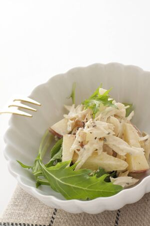 boiled scallop and apple salad Imagens
