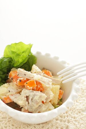 Chicken and carrot salad on white background