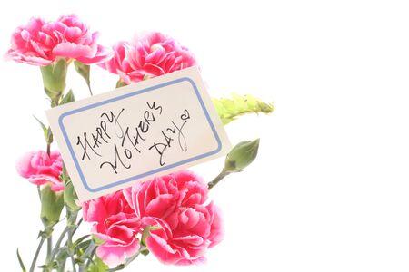 Hand written message card and carnation Zdjęcie Seryjne