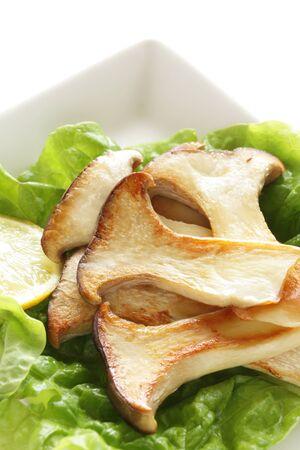 Pan fried Japanese Oyster mushroom for vegetarian food image
