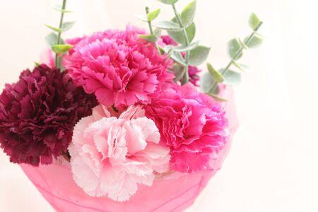 artificial carnation on white background Zdjęcie Seryjne