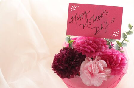 Artificial carnation and hand written Happy Mothers Day card