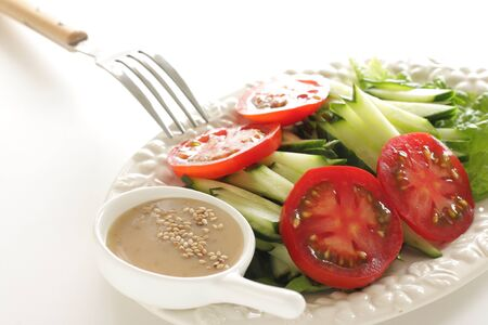 Homemade cucumber and tomato salad served with sesame seed Archivio Fotografico