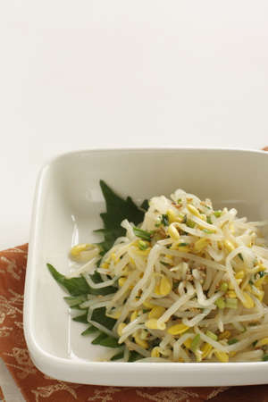 Korean food, boiled soy bean sprout and seasoning, green onion mixed Namul side dish