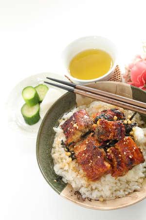 Japanese food, grilled eel Unagi fish and sweet sauce