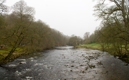 Beautiful and misty scenery in Bolton Abbey, Wharfedale, North Yorkshire, UK