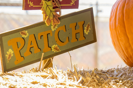 Sign reading patch next to a pumpkin.