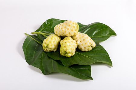 With noni fruit Morinda citrifolia ovoid shape, and an irregular surface whitish or yellowish color.
