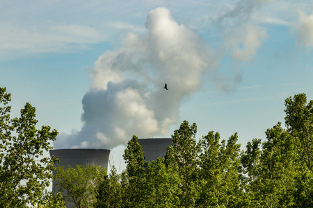 Steam pours from the cooling towers of a active nuclear power plant as an eagle soars above.