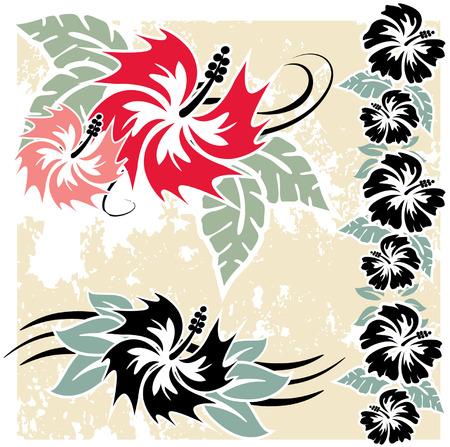 다양한 히비스커스 하와이 열 대 꽃 일러스트