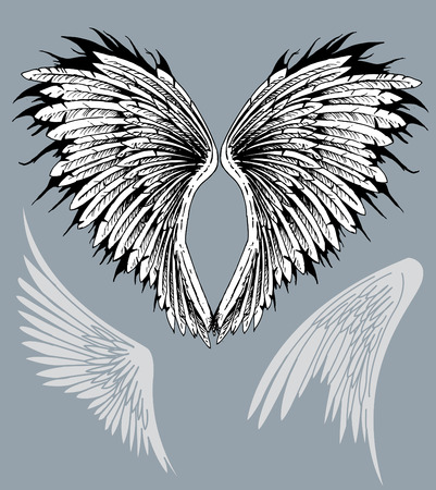 angelic: Emplumada extendi� las alas del halc�n del �guila de aves angelicales