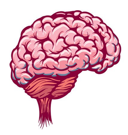 Cartoon Brain Pink Red