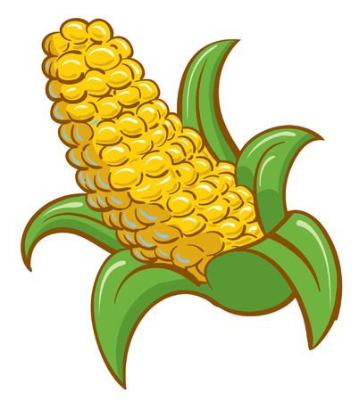 Bright Corn on the cobb cartoon